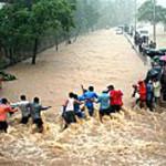 ali-disasters